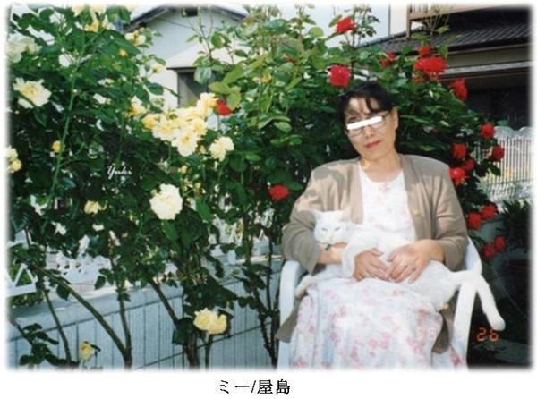 Acm3_1996_m005a