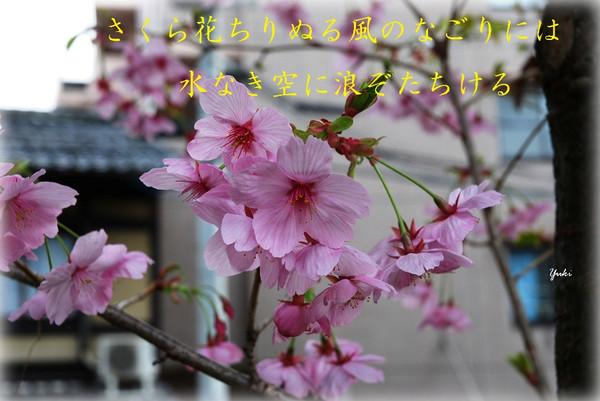 Asy11b_049aa