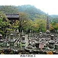 a化野念仏寺6