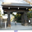 k京都御苑13