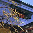 g祇園での新年会4