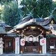 h平野神社6:本殿