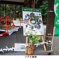 k上賀茂神社と下鴨神社5