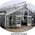 k桂高校農産物品評会3