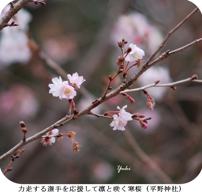 j女子駅伝2012:6