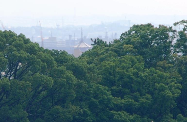 m5東寺五重塔と北野天満宮の森
