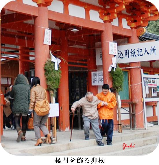 k上賀茂神社と下鴨神社9