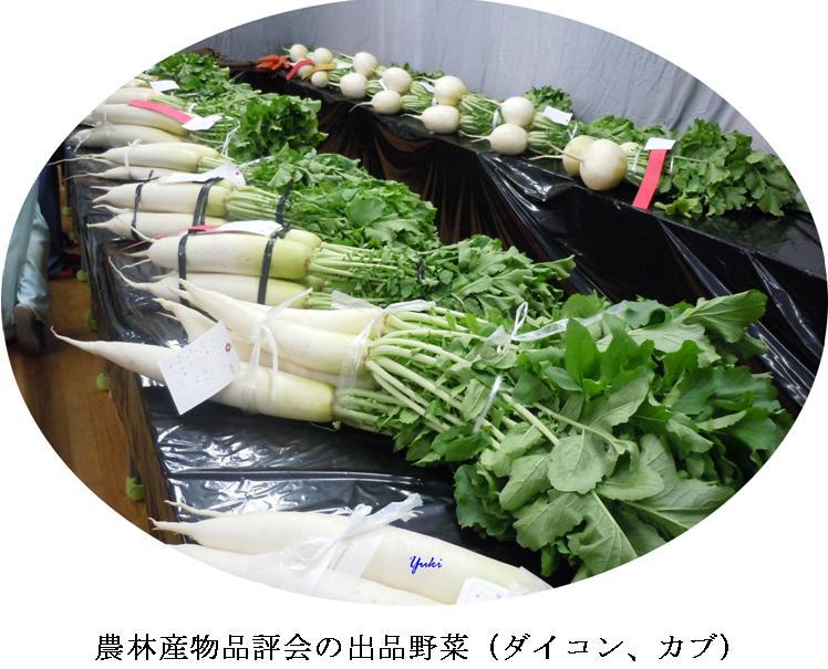 k桂高校農産物品評会4
