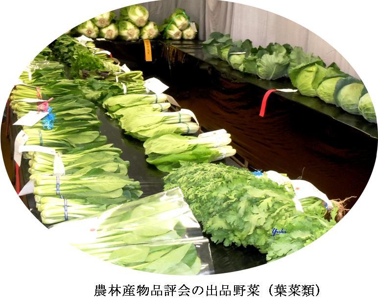 k桂高校農産物品評会5