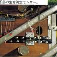 オランダ11:地下部の生育測定センサー