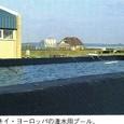 オランダ13:タキイ・ヨーロッパの潅水用プール