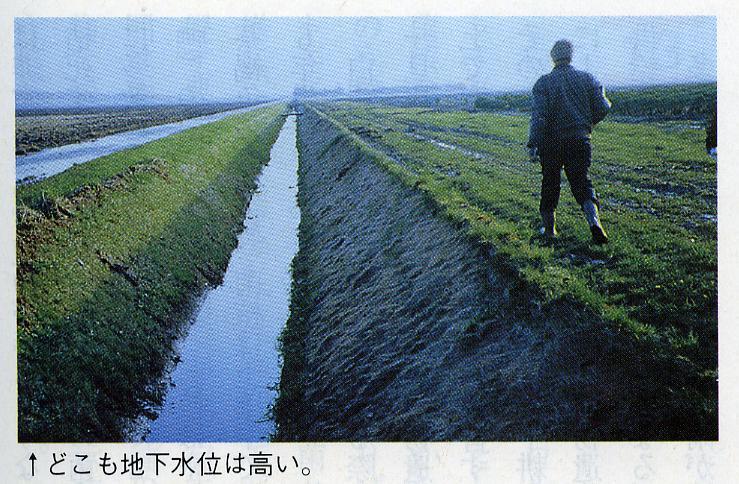 オランダ9:オランダの地下水位は高い