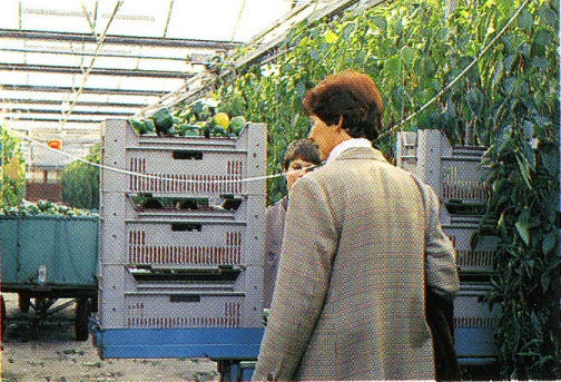 オランダ18:ガイドのゲルダさんの案内で農園見学
