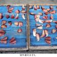 t徳島・びんび屋11:切り身の日干し