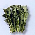 d伝統野菜5