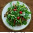 ベビーリーフのグリーンサラダ